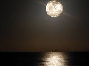 moonlight300-32423c0937f6d8a74acee4cef8bf3749e586828f-s3-c85