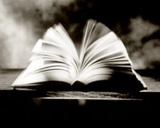 libros-abiertos-313x250